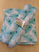 BBHHz--Turquoise Feathers Blanket & HHz