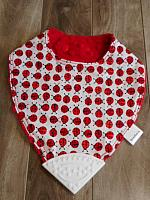 BTeether--Ladybugs on Red minky with White corner