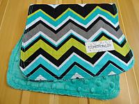Burpie--Chevrons on Seafoam minky