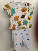 LVB--Owls top & leggings set *
