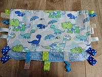 Blankie--Blue Dinos on Sky minky